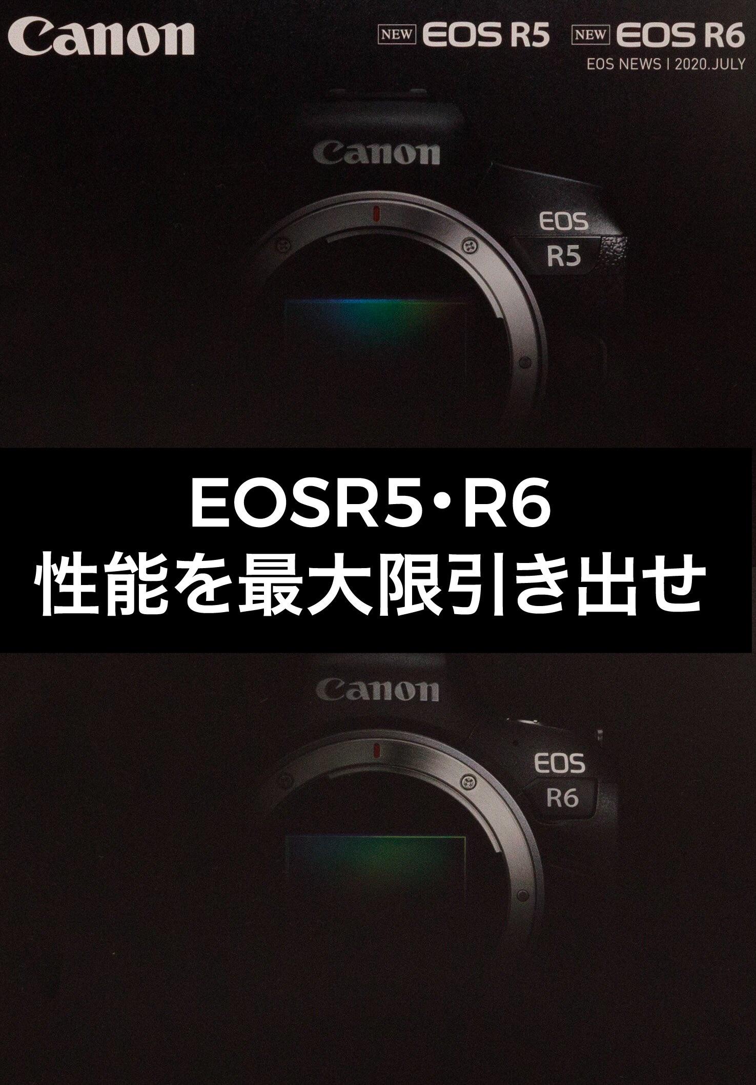 EOSR5・R6POWER