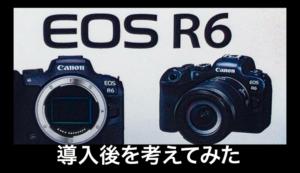 eosr6in
