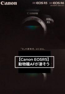 EOSR5瞳AF