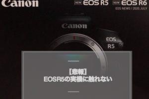 EOSR5実機に触れない